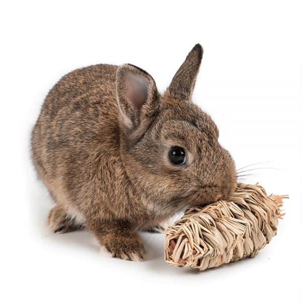 Carotte pour lapin en paille Mon Lapin Nain 3