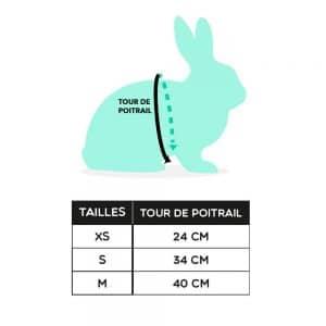 Harnais pour lapin | Rosa Mon Lapin Nain 2