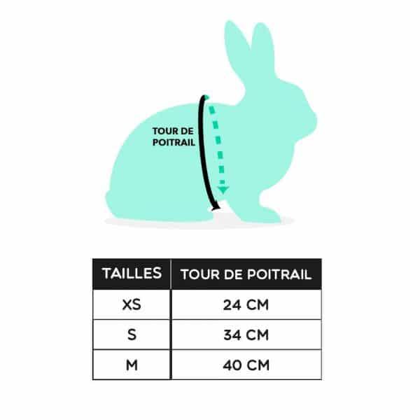 Harnais pour lapin | Rosa Mon Lapin Nain 4