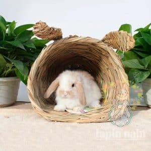 Cabane lapin en paille | NaturBunny™ Mon Lapin Nain