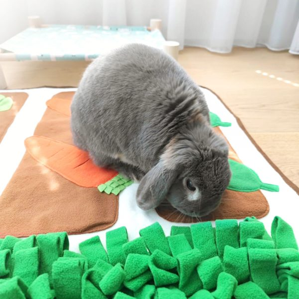 Tapis de fouille pour lapin ludique Mon Lapin Nain 3