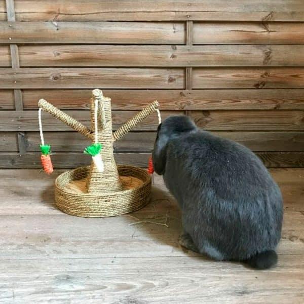 Arbre à lapin   Arbre à carottes avec mangeoire à foin Mon Lapin Nain 7