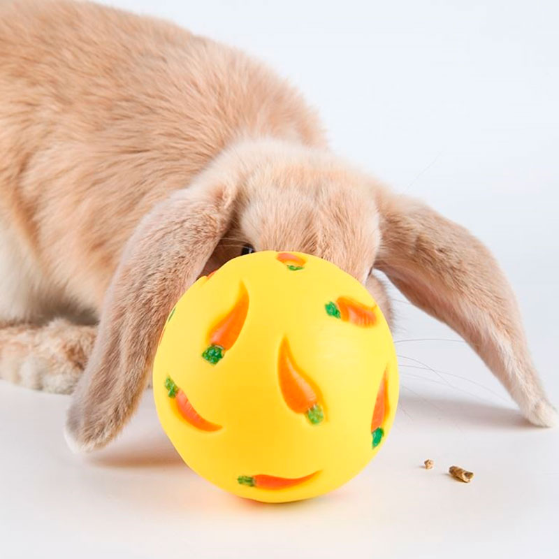 balle friandise lapin nain belier