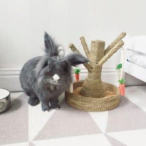 Arbre à lapin | Arbre à carottes avec mangeoire à foin Mon Lapin Nain