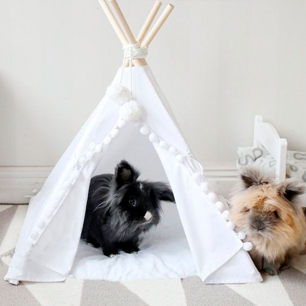 TIPI POUR LAPIN NAIN BELIER
